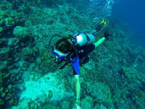 dica do que fazer em curaçao: mergulhar