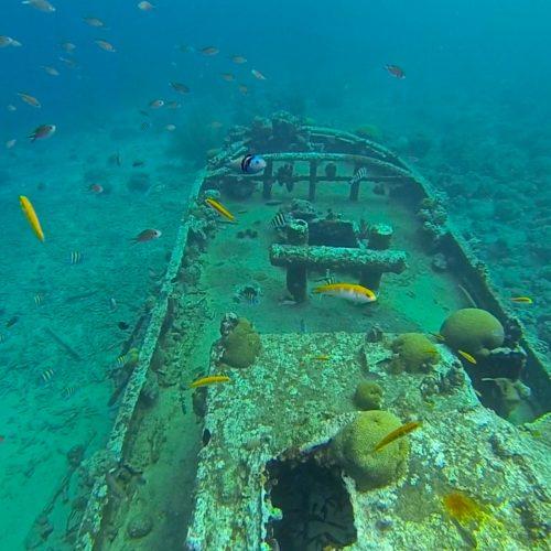 snorkel no tugboat em curaçao