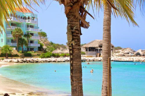 praia do Bluebay Curaçao