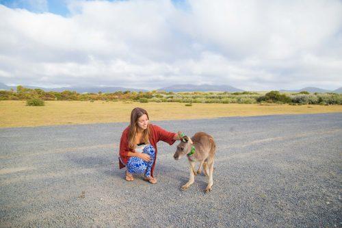 Eu e o Canguru