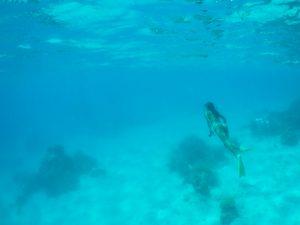 mergulho em Lady Musgrave island