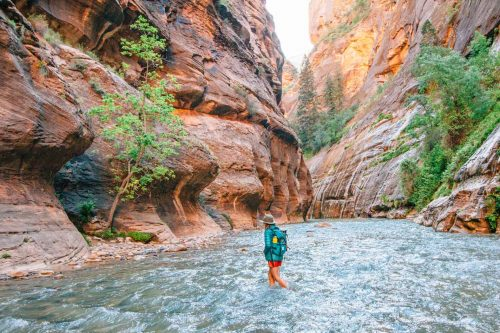 the narrows em zion