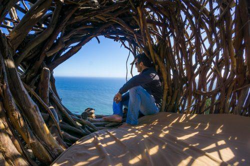 Treebones na california