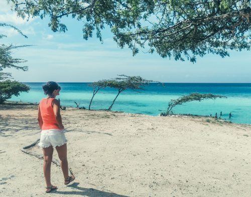 guia de aruba na praia mangel halto