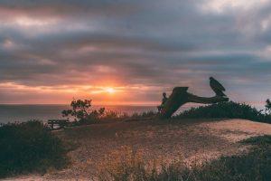 Sunset seats no por do sol