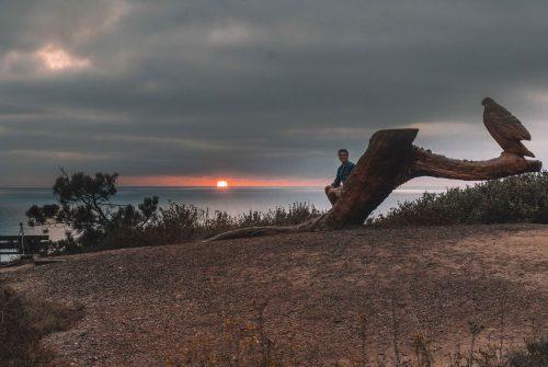 sunset seat para por do sol em la jolla